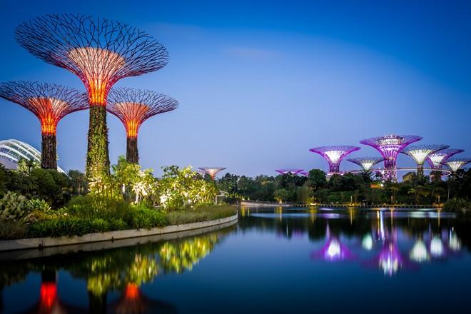 Gardens by the Bay – khu vườn tuyệt hảo của Singapore