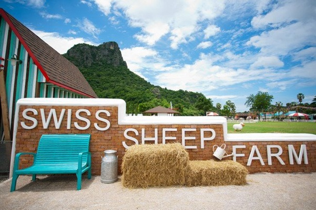 Swiss sheet Farm