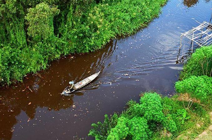 Khám phá U Minh Hạ bằng thuyền xuôi dòng nước