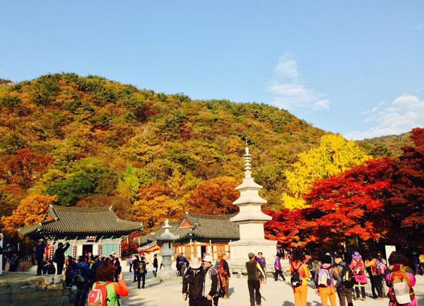 Khá nhiều lễ hội ở Hàn Quốc vào thời điểm này