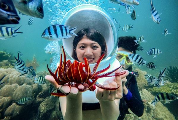 Lặn ngắm san hô muôn màu sắc tại công viên Namaste